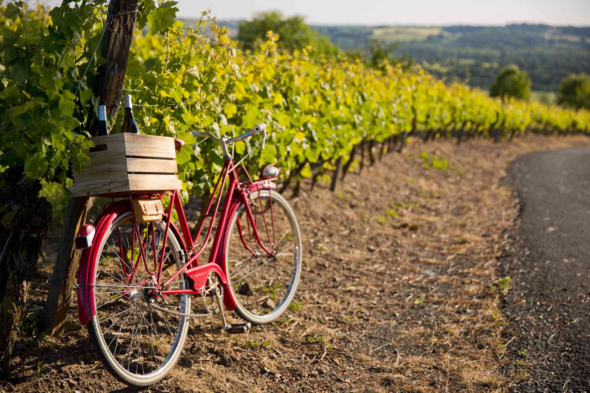 acheter ferme vignoble bordeaux